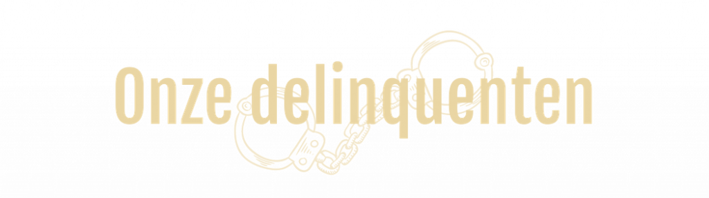rijkshotel delinquenten banner
